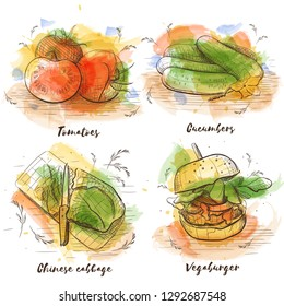 Vector watecolor sketch vegetables collection. Healthy eating. Vegetarian organic healthy food cuisine.