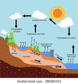 A vector of water cycle .