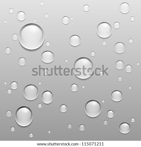 Vector Water Drops Illustration on gray background