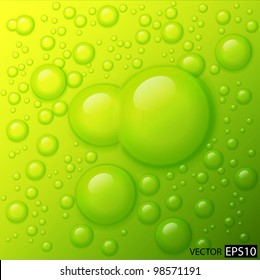 Vector water drops on lime green background.