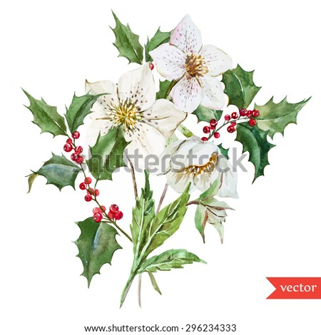 vector watercolor botanical drawing christmas white stock vector