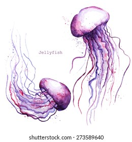 Vector watercolor jellyfish