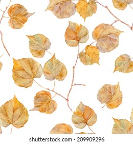Vector watercolor leaf. Vintage template. Herbarium. Isolated on white. Autumn seamless pattern with leaf. Autumn theme.