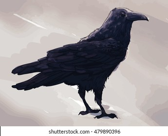 Vector watercolor picture of raven