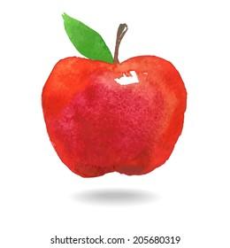Vector watercolor red apple.