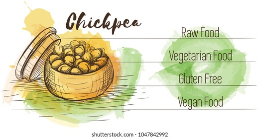 Vector watercolor sketch card of vegetarian food. Eco food. Chickpea isolated on white sketch with characteristics.