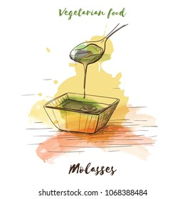 Vector watercolor sketch vegetarian food. Eco food. Molasses isolated on white sketch.