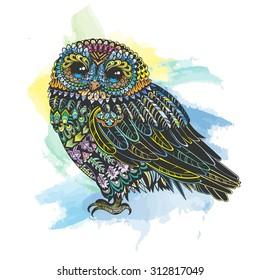 Vector WaterColor Vintage Owl Illustration