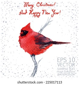 Vector watercolor-style Christmas/New Year greeting card with cardinal.