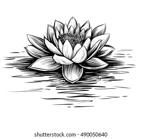 Vector waterlily with water waves. Lotus illustration. Black and white graphic art line. Linocut style.