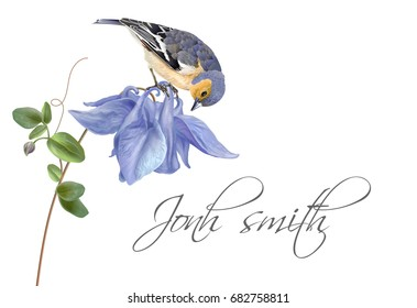 Vector wedding invitation name card with elegant blue flower and cute bird isolated on white background. Can be used as floral design for cosmetics, perfume, health care products, greeting cards