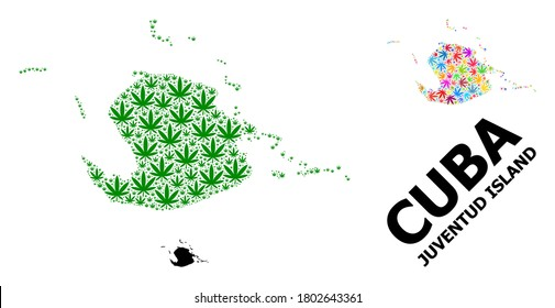 Vector weed mosaic and solid map of Juventud Island. Map of Juventud Island vector mosaic for weed legalize campaign. Map of Juventud Island is composed from green and bright weed leaves.