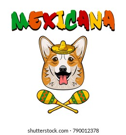 Vector welsh corgi dog face with sombrero, maracas and whiskers icon. Mexicana. Vector illustration isolated on white background.