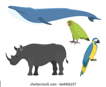 Vector whale illustration north surface deep humpback ocean marine mammal wildlife aquatic endangered species character.
