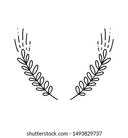 Vector of wheat ears. Simple monoline hand drawn illustration of spikelets isolated on white background in doodle style