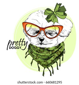 Vector white dog with orange glasses, green scarf and bow. Hand drawn illustration of dressed lap-dog.