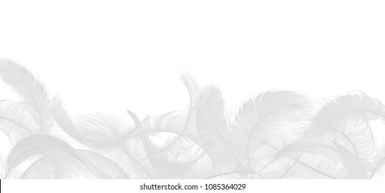 Vector white feathers collection, set of different falling fluffy twirled feathers, isolated on white background. Realistic style, vector 3d illustration.