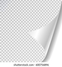 Vector white paper page curl on the transparent background