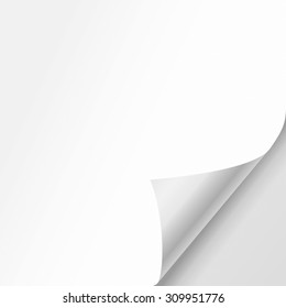Vector white sheet of paper with realistic curled corner.