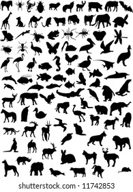 vector wild animal and domestic shapes