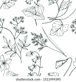 Vector Wildflowers floral botanical flowers. Wild spring leaf wildflower isolated. Black and white engraved ink art. Seamless background pattern. Fabric wallpaper print texture.