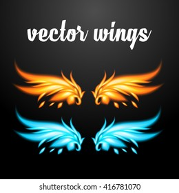 Vector wings - Phoenix. EPS 10