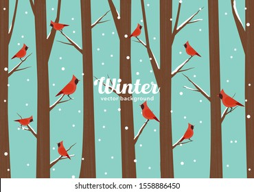 Vector winter illustration with cardinal birds sitting on branches isolated on snowy background.