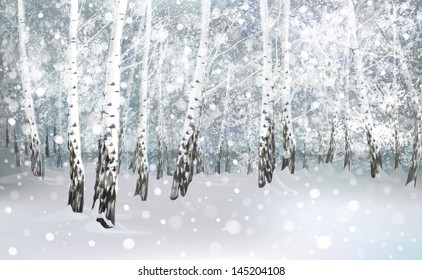 Vector of winter snowy landscape, birch forest.