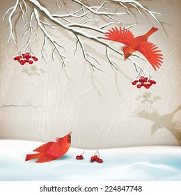 Vector winter vintage style landscape with birds, tree branch, snowdrifts, decorative plaster wall