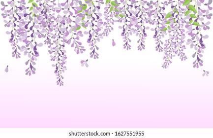 vector wisteria, purple flower in garden, wedding card, fuji flower