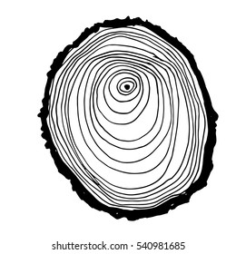 Vector wood surface as background.Tree trunk cross section. Natural pattern. Black and white isolated on white background. Wood icon or sawmill logo