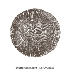 Vector wood texture of rough cracked ring pattern from a slice of tree. Grayscale wooden stump isolated on white.