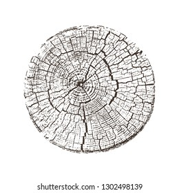 Vector wood texture of wavy ring pattern from a slice of tree. Grayscale wooden stump isolated on white.