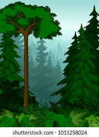 vector woodland green forest trees backlit