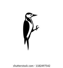 vector woodpecker silhouette