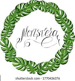 vector wreath of green leaves of monstera and lettering on a white background