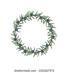 Vector wreath of  hand drawn juniper twigs with berries. Beautiful floral design elements, ink drawing