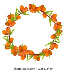 Vector wreath of sea buckthorn berries and leaves. Round frame isolated on white background. Place for text.