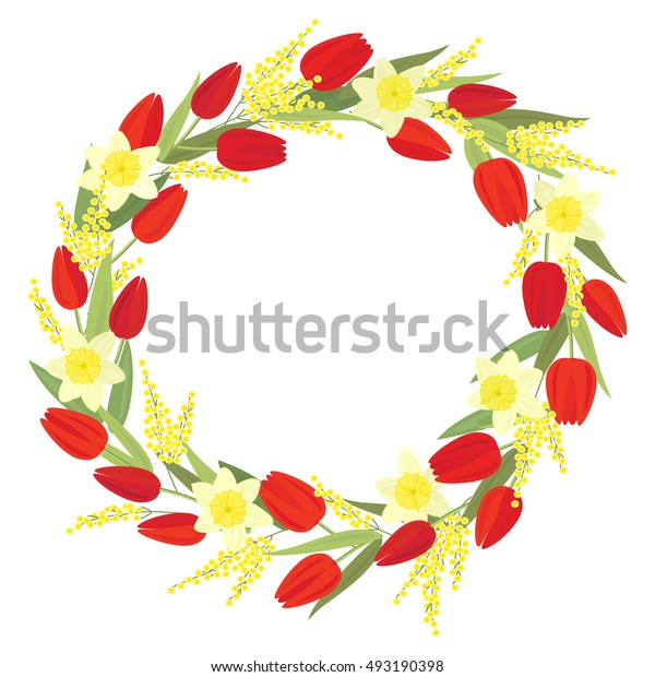 Vector wreath with spring flowers red tulips, daffodils and Acacia dealbata on white can be used as greeting and invitation card, congratulation, Women day