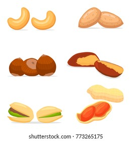 Vector for yellow cashew, brown hazelnut, brazil nut, green pistachio, peanut and almond. Nuts consisting of nutshell nutley. Eat cashew, brown hazelnut, brazil nut, green pistachio, peanut, almond.