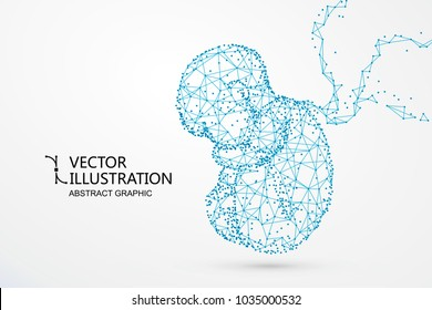 Vector_369Artificial nurtured bionic fetuses, points and lines connected, vector illustration.