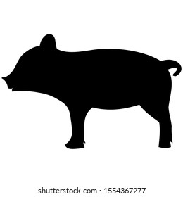 vector-graphic illustration of a pig, isolated on white background