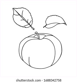 Vector-graphics.Apple.Leaves.Image on a white background.