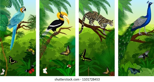 Vectorset of jungle rainforest vertical baners with clouded leopard, peacoock, blue ara, great hornbill and butterflies