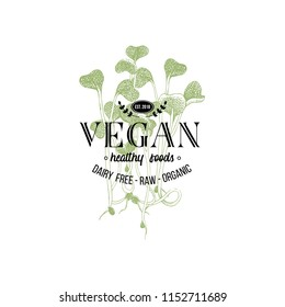 Vegan logo design over hand drawn alfalfa sprouts. Vector illustration in vintage style