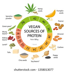 Vegan sources of protein. Infographic vector illustration
