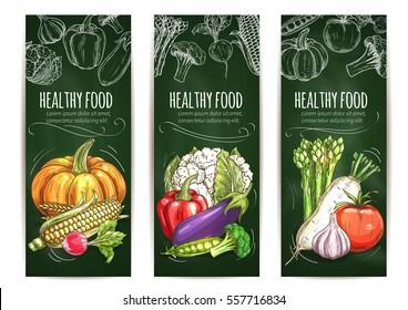 Vegetable banner blackboard. Healthy food of tomato and pepper, garlic and eggplant, corn, pumpkin, cauliflower and broccoli, pea and radish, asparagus. Organic food shop, farm market design