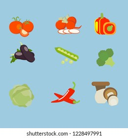 vegetable frame natual