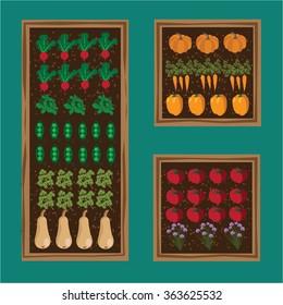 Vegetable garden planner flat design. EPS 10 vector stock illustration
