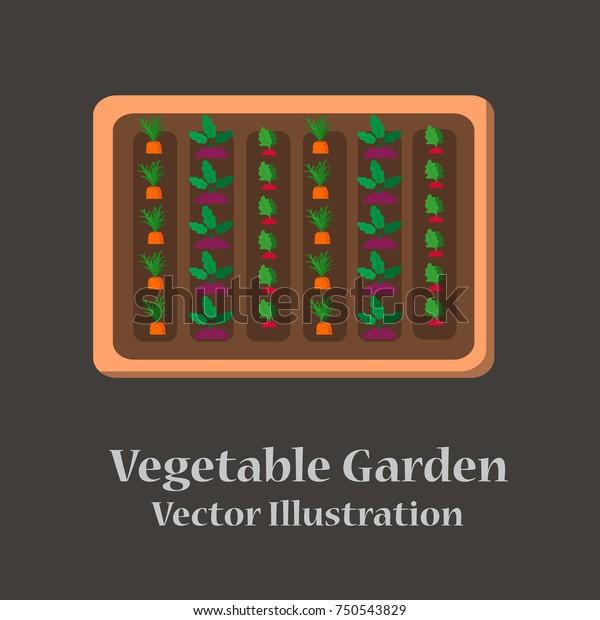 Vegetable Garden Planner Flat Design Vector Stock Vector Royalty